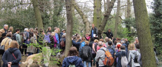 Great North Wood walk - Vicky Bruce